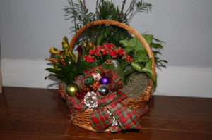 Christmas plant basket