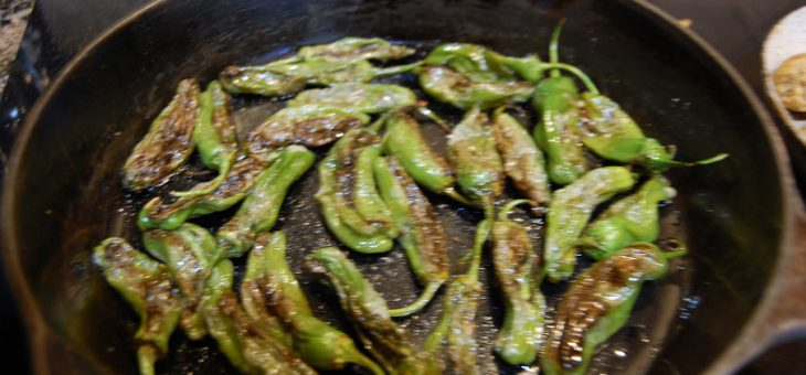Padrón or Shishito Peppers – good as an appetizer or side dish