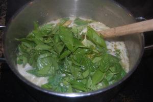 Basil soup