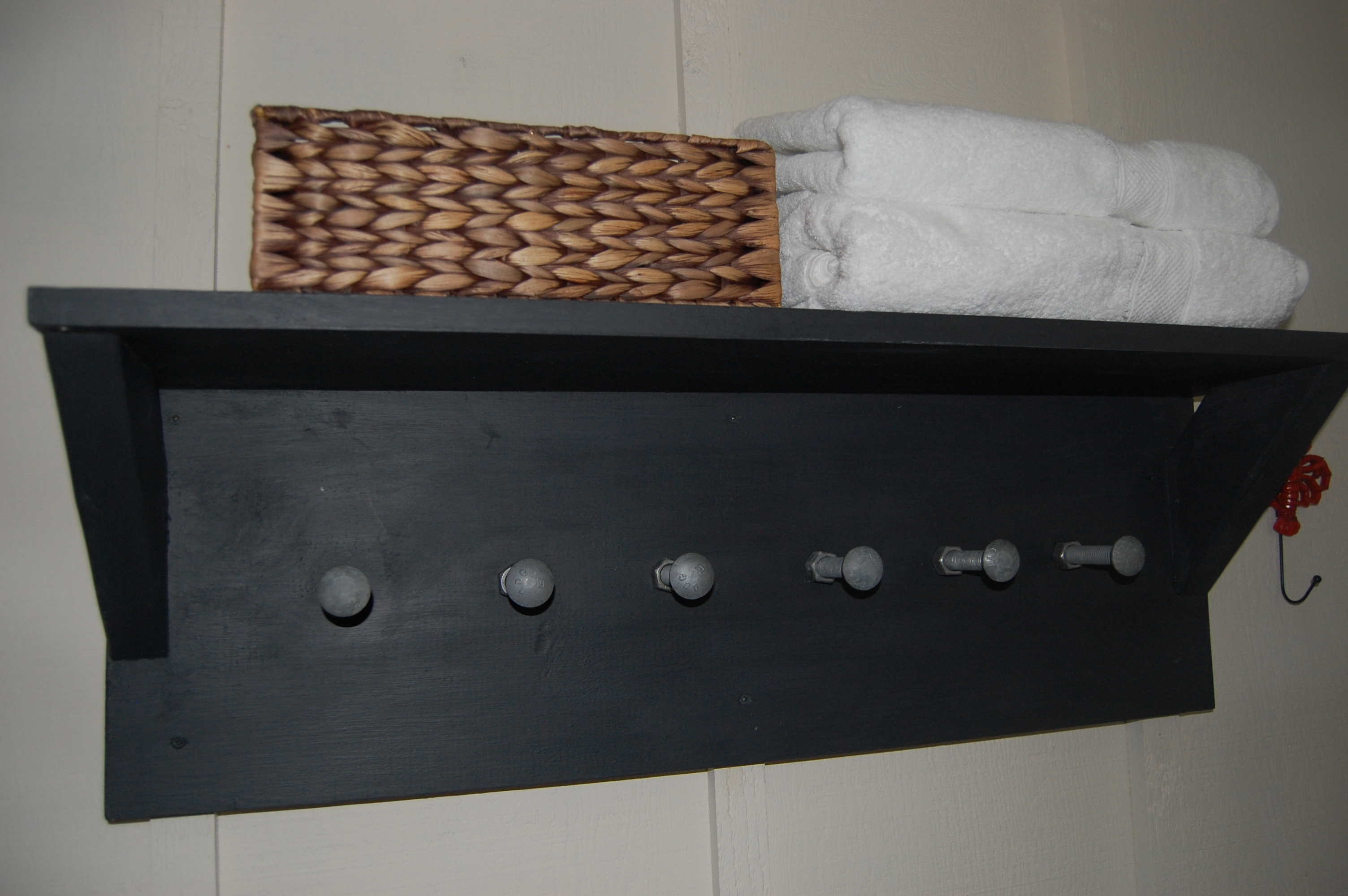 Latest DIY projects : hand made shelf and interior door makeover
